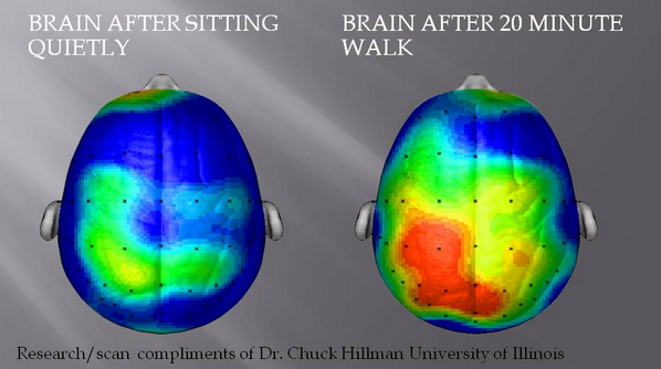 Exercise increases brain power and activation