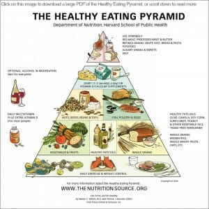 healthy eating guide - nutrition and food pyramids