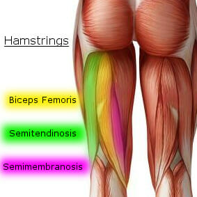 Myofascial Release - Tight Hamstring Treatment