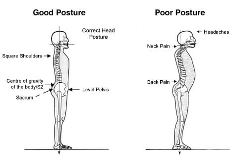 Flexibility and stretching exercises can expand or preserve the range of motion and elasticity in affected cervical (neck) joints, and thus relieve the stiffness that accompanies pain. As a general rule, neck stretching is best done every day, and some stretches can be done several times a day.